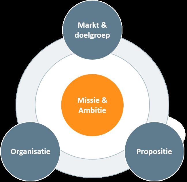Strategie in de gezondheidszorg Vintura model