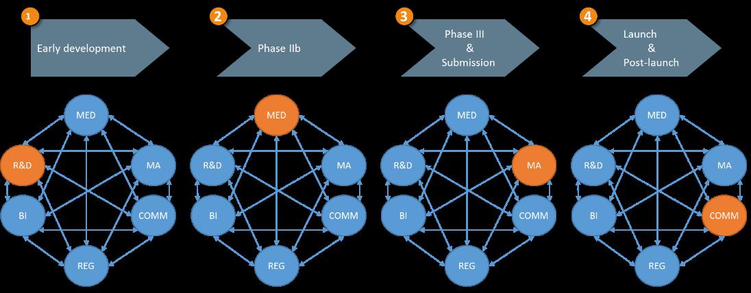 Brand-team-structure-market-access-1